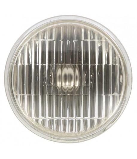 67/68 Ampoule clair, bulbe